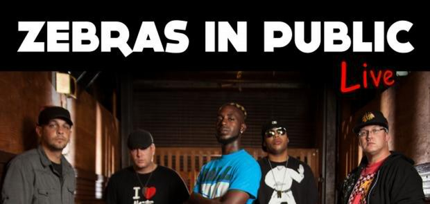 Get to Know Download Artist of the Week: Zebras in Public