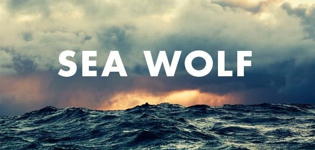 Enter to win tickets to see Sea Wolf