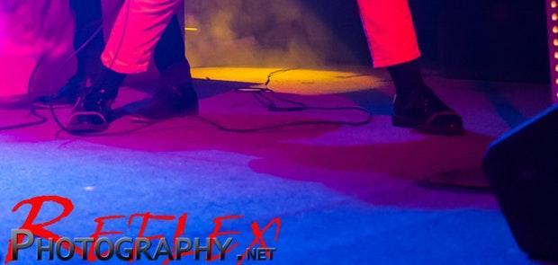 Foxy Shazam :: Reflex Photography